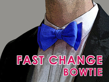 Fast change bow tie