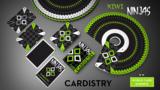 Cardistry Kiwi Ninjas (Green) Playing Cards_