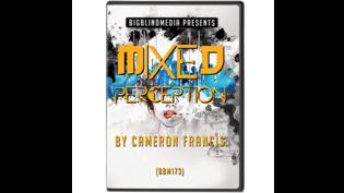 Mixed Perception by Cameron Francis