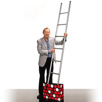 Appearing Ladder, by Wayne Rogers