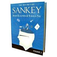 Definitive Sankey 2