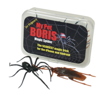 Magic Spider - My pet boris