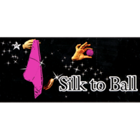 Perfect silk to ball roze - JL