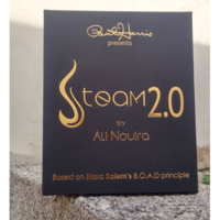 Steam 2 - Ali Nouira & Paul Harris