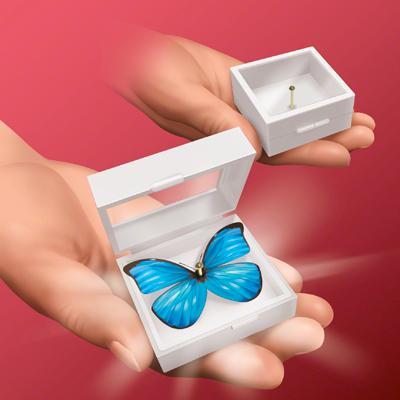 Magic Butterfly - T-262 - Tenyo 2015