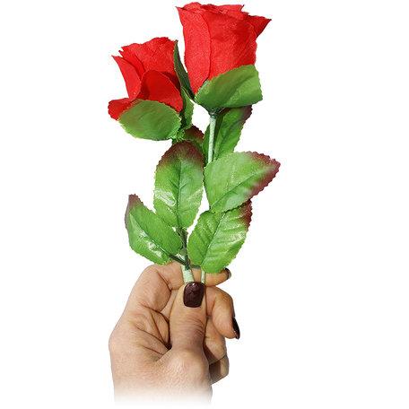 Multiplying Rose V2