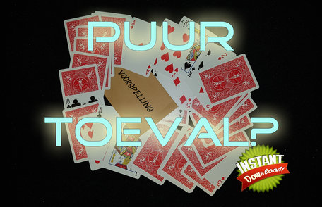 Puur toeval? Instant download