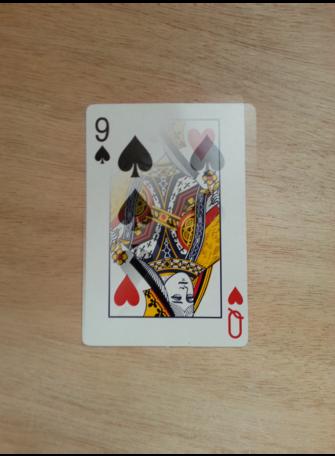 2 Card Transpo kaarttruc