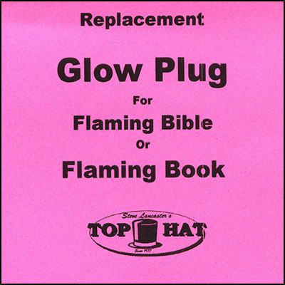 Gloeiplug - glo plug