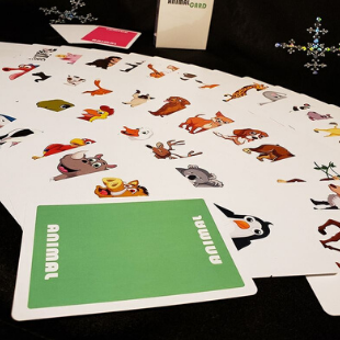 Animal Card deck