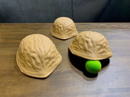 Giant 3 shell game set