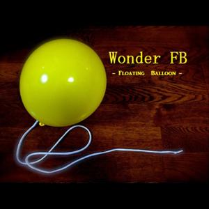 Wonder Floating Balloon Goochelwinkel Magicshopnl