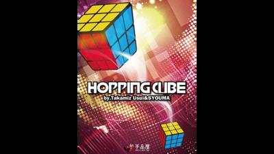 Hopping Cube by Takamiz Usui & Syouma