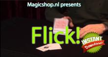 Flick instant download